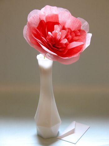 Crepeflower
